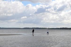 Seichtes, kristallklares Wasser und hunderte Meter lange Sandbänke. Der Strand ist nur wenige Minuten Fußweg vom Campingplatz Seeblick Hohenkirchen/Niendorf entfernt. © spothits.
