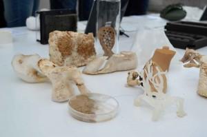 9. Designers Open Leipzig 2013: Hohlkörper wird mit Substrat befüllt. Hierin sind Pilzsamen enthalten. Die wachsenden Pilze liefern Festigkeit. © spothits/foto: katharina geissler