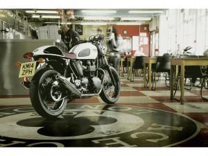 Triumph Sondermodelle stehen beim Händler. © spothits/Triumph