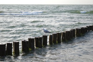 Ostseeküste Mecklenburg: Online freie Plätze finden. © spothits