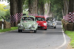 Automobiljuwelen aus der Autostadt in Dyck. © spothits/Auto-Medienportal.Net/Autostadt