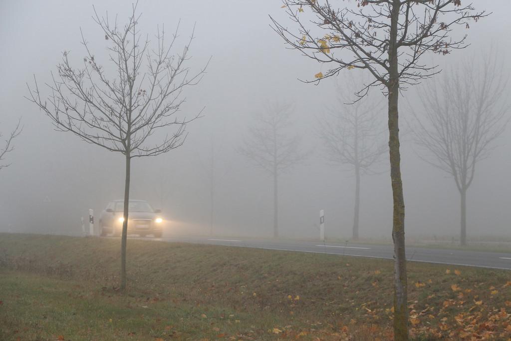 Sicher durch den Nebel. © spothits/Auto-Medienportal.Net/ARCD