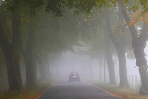 Ratgeber: Fahren im Nebel . © spothits/Auto-Medienportal.Net/ADAC