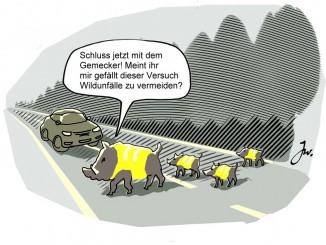 Ratgeber: Vorsicht vor dem Wild. © spothits/Goslar Institut