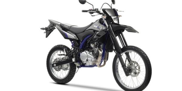 Yamaha WR 125 R. Foto: spothits/ampnet/BMW